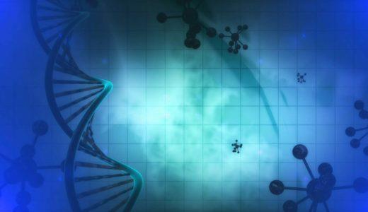 研修後記 ~悪いDNAは継承されやすい~